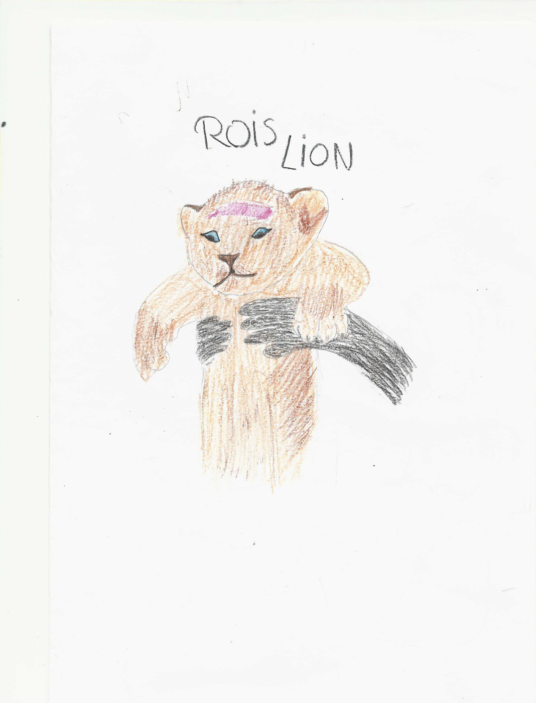 rois lion