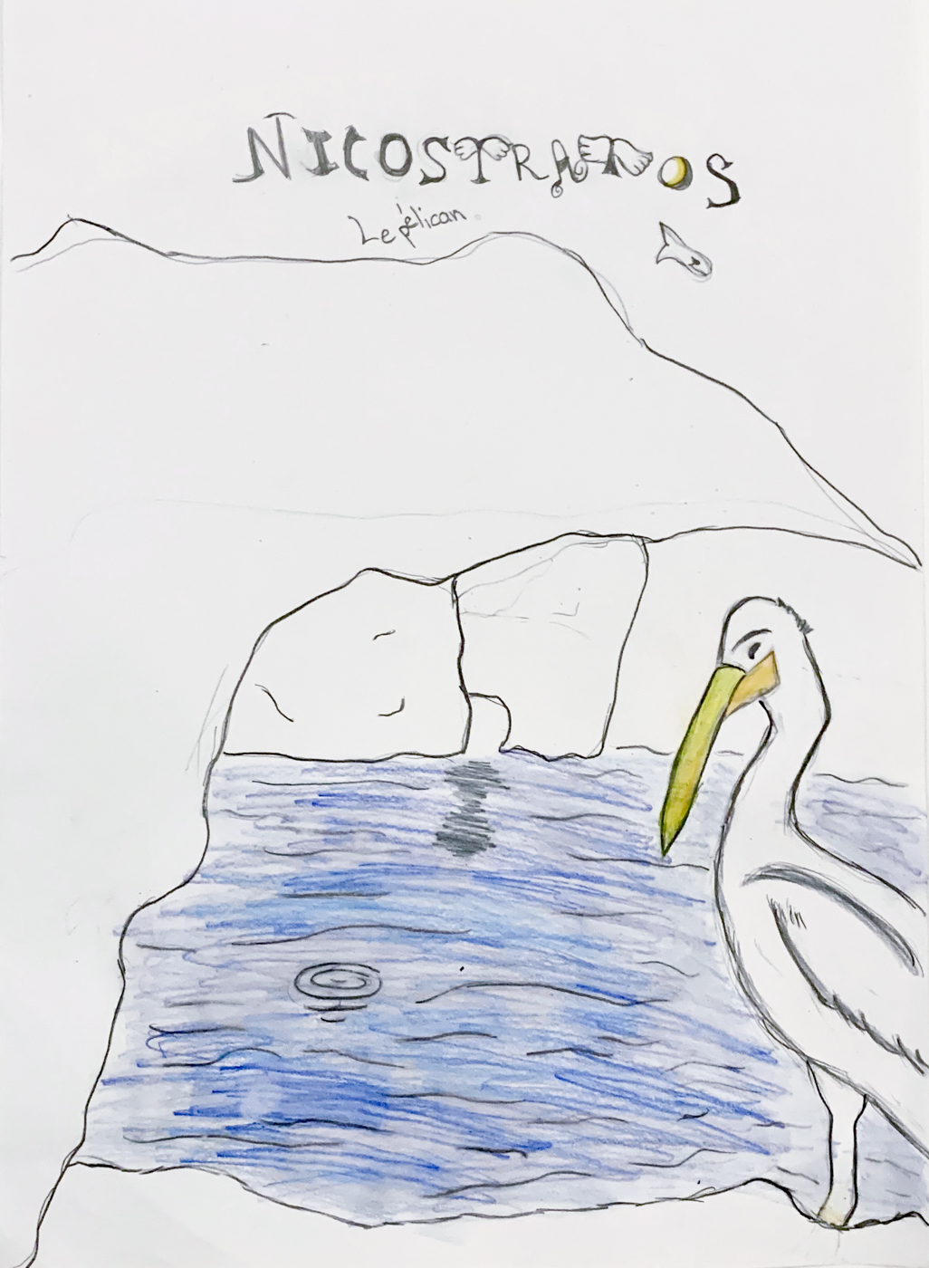 nicostratos le pelican